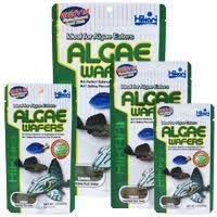 Hikari Algae Wafers 40gr