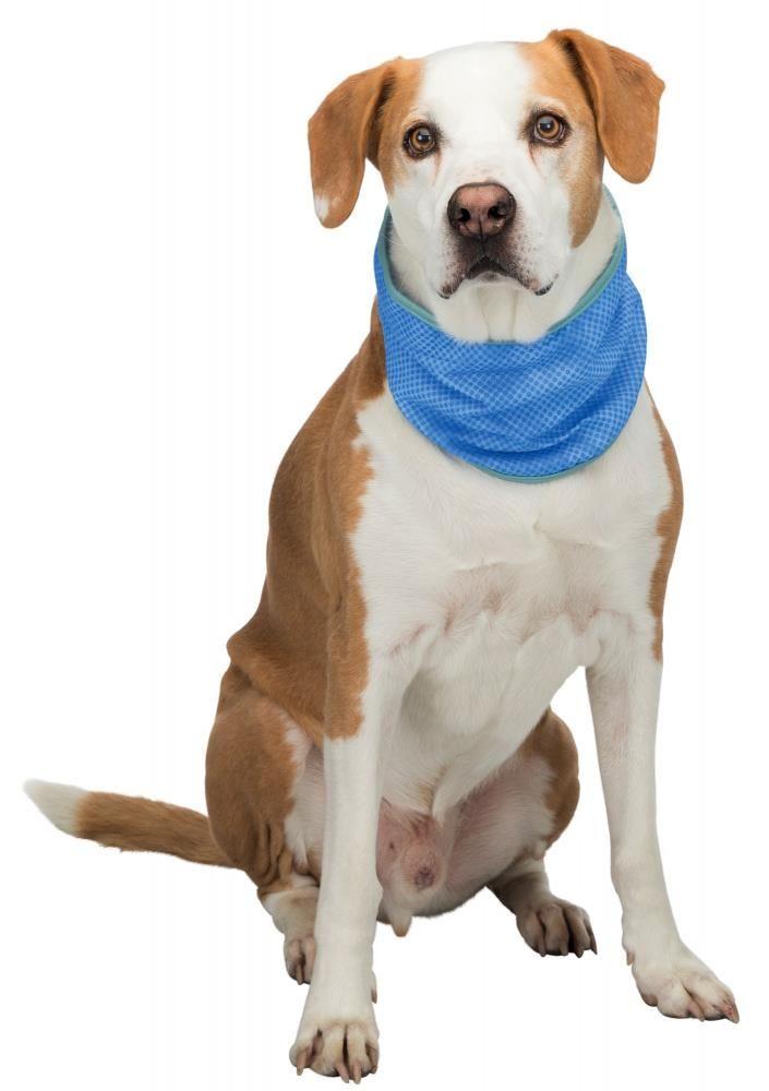 Trixie salmon stripes 90gr