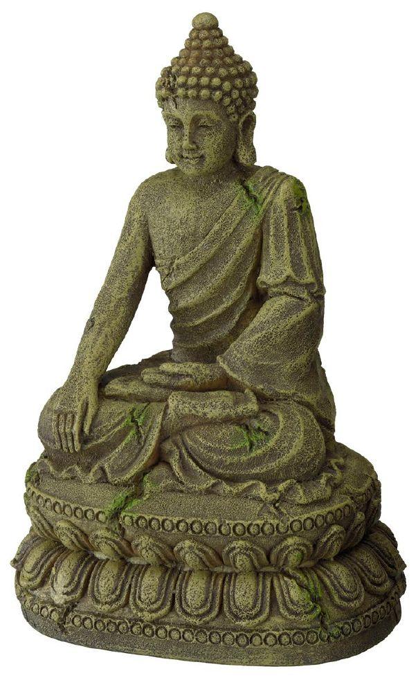 Akvarie buddha