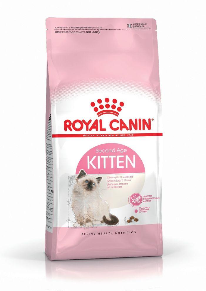Kitten 4kg