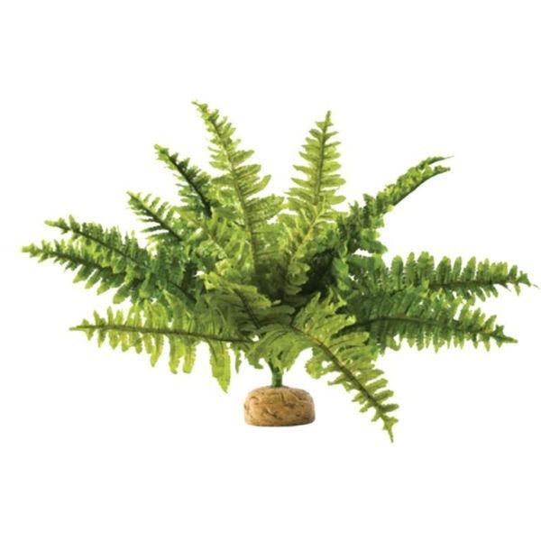 Kong Signature Ball L 2pk