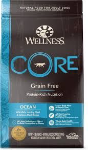 Core ocean adult salmon 10kg