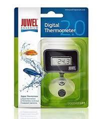 afp treat hider rooster