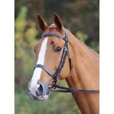 My Family Romanga Water Dog White