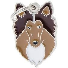 My Family Collie tag
