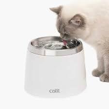 Hamsterbur Bob