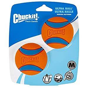 Chuckit Ultra Squeaker Ball 2pk