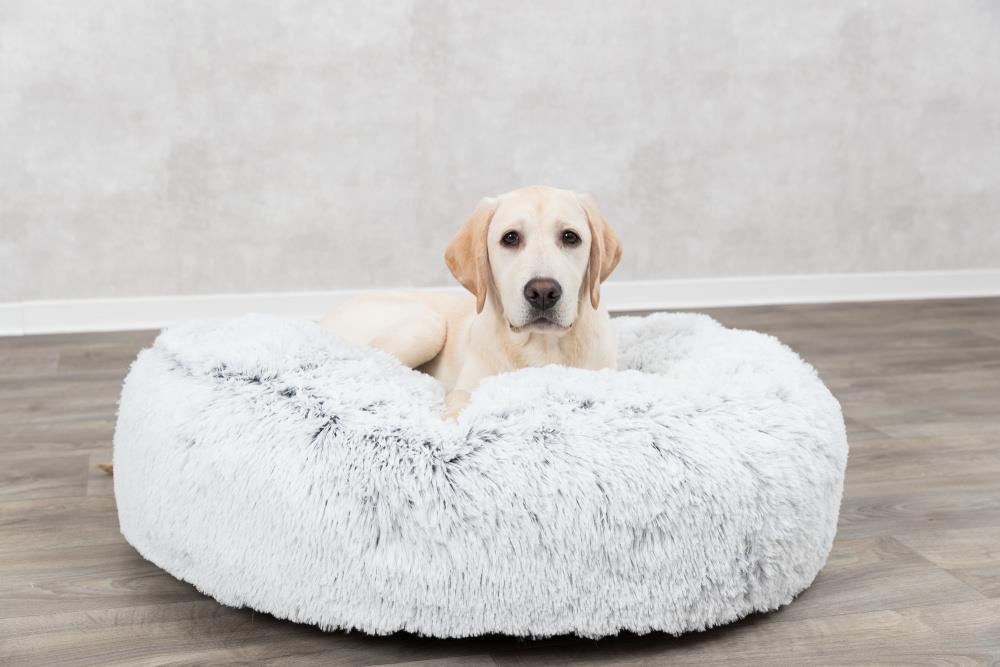 Harvey Hundepute 80cm