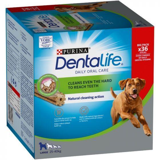Cham Paws Bubbles & squeak
