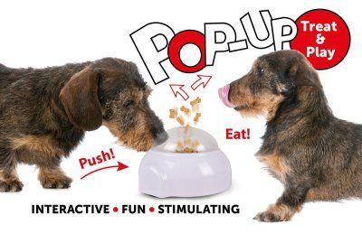 Pop - Up Treat Toy