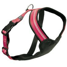 Dog Multi Harness Active Str S