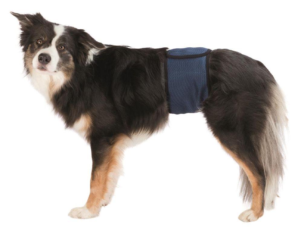 Magebelte Til Hannhund XL 65-75cm blå