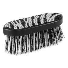 Rotbørste zebra svart