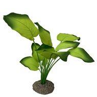 Akv. Pynt Anubias 3 Grønn 20cm
