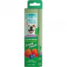 Tropiclean fresh breath gel berry